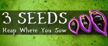 """3 Seeds is a 30-45 minute, 2-5 Player, Light Strategic Card Game. Players use seed cards (Time, Money, & Labor) to complete crops, employ special event cards to gain bonuses, and uncover hidden harvest cards to maximize their points. Remember it isn't just what you sow, its WHERE you sow!"""